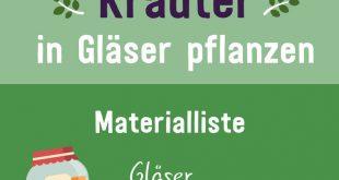 Kräuter im Glas pflanzen: Video-Anleitung & Tipps